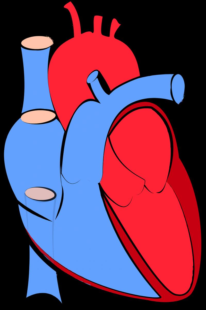 Ojämlik hjärtsjukvård
